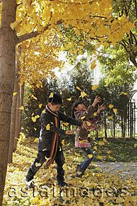 Asia Images Group - Young boy and girl playing in the Autumn leaves
